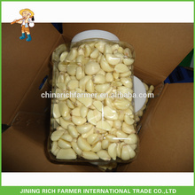 Excellent Quality Reasonable Price Peeled Garlic Cloves