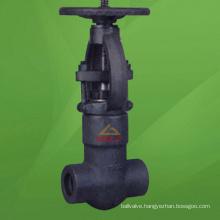 2500 Lb Forged Steel Pressure Seal Gate Valve (GAZ41H)