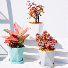 New arrival small white blue cheap plants pots small plastic flower pots succulent planter pot with tray