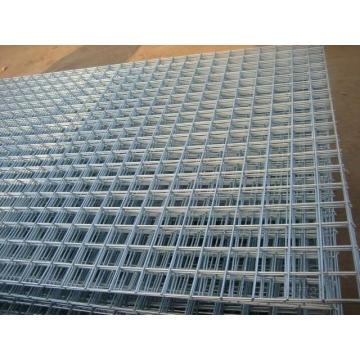 Galvanized /Concrete Welded Wire Mesh