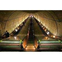 Aksen Escalator Heavy Duty Type de trafic