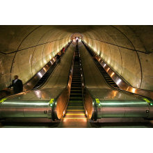 Aksen Escalator Heavy Duty Traffic Type