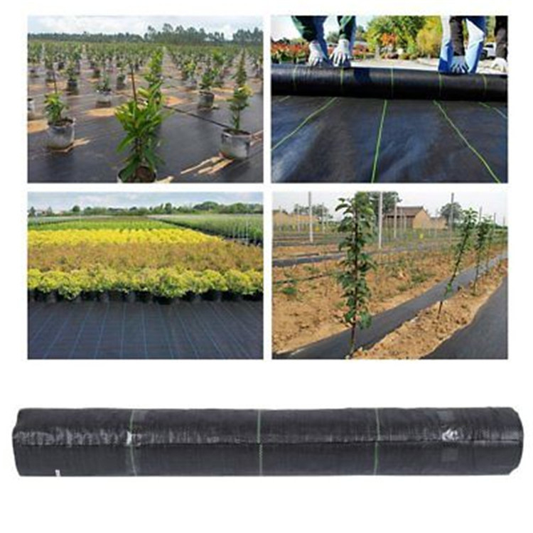 Weed Control Mesh