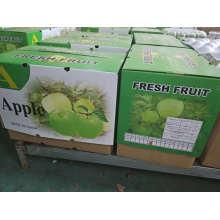 Manzana Qinguan verde fresca