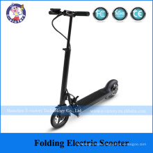 Cheap Small Folding Electric Bike, Cheap Electric Bicycle with EN