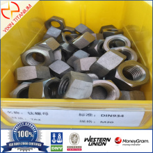 Titanium TA2 Hexagon mutter M20
