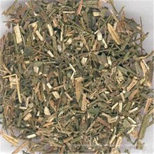 dried Andrographis