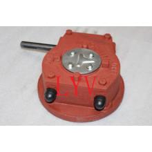 Fabrik Direktverkauf Anpassbare Schneckengetriebe