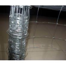 Clôture de gruau / grenouillère en acier galvanisé / clôture de gruau de volaille