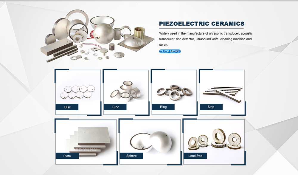Piezo Ceramic Elements 4
