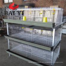 Alta qualidade Preço baixo Preço Old Day Broiler Chicks