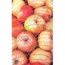 Raschel Mesh Bag for Fruit D (11-20)
