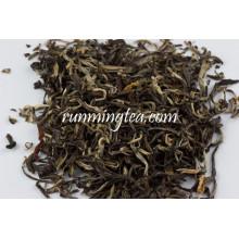 Thé vert Jasmine de haute qualité