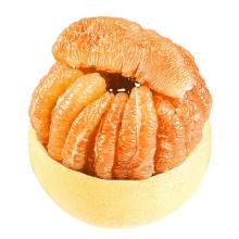 Grapefruit Fresh Chinese Shaddock for Wholesale Honey Golden Pomelo