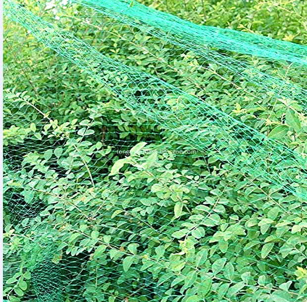 Agricultural Fruit Bird Netting
