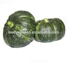 MPU08 BQ no.4 semillas de calabaza verdes híbridas ásperas, semillas vegetales