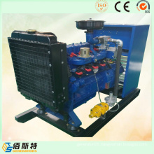 Economical 30kw Gas Driven Electric Power Generator for Sale with Ce ISO