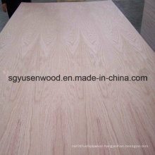 4*8 Hardwood Veneer Birch Veneer Plywood Furniture Grade Plywood