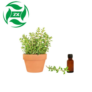 Hot selling expelling parasite Linalyl Oil