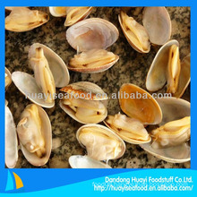 frozen boiled short necked clam