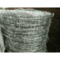 Electro y Hot Dipped Hot Dipped Barbe Wire (fabricante especializado)