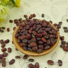 Red Cowpea for sale