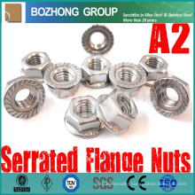 Manufacture Custom M2 to M64 Anchor Bolts Screw and Nut