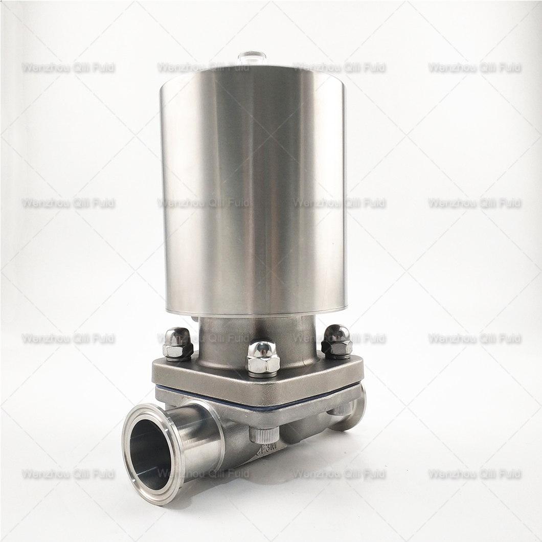 Pneumatic diaphragm valve (17)