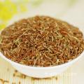 Produits agricoles en gros Riz rouge Riz à grains longs