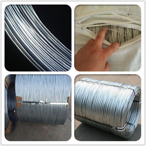 clear photos of electro galvanized wire