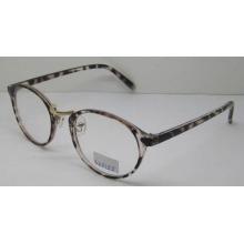 Cadre optique de qualité Optical Frame / Acetate Optical Eyewear Frame (SZ5155)
