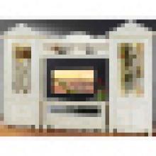 TV Cabinet for Living Room Furniture (310)