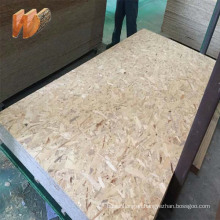 1220x2440mm construction OSB for building