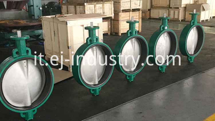 Concentric Buttefly Valves1