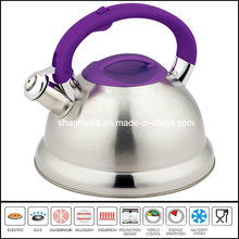 Luxury Stainless Steel Whistling Kettle