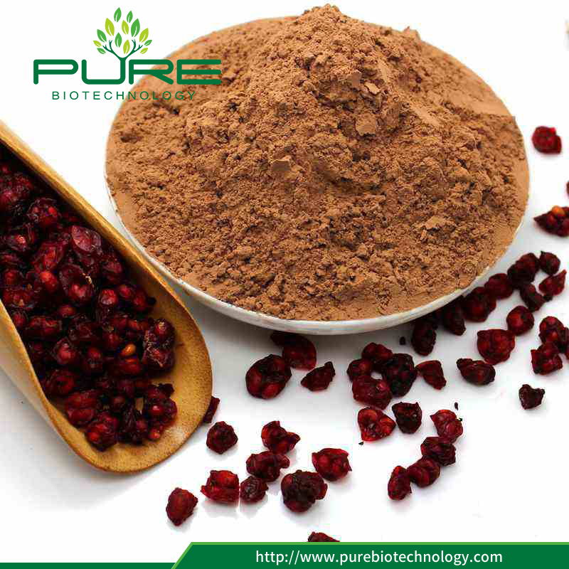 100% Natural Schisandra Chinensis extract