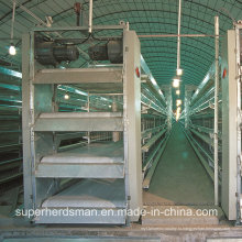 Автоматический контроль сарай Цыплятины Оборудование для несушек и бройлеров