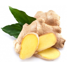 Wholesale organic fresh ginger price
