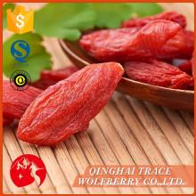 Правильная цена высшего качества goji berry