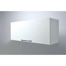 """Mountain"" Series (SM) Wall Cabinet"