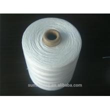 Fil de fermeture du sac en polyester de haute qualité 20S / 6