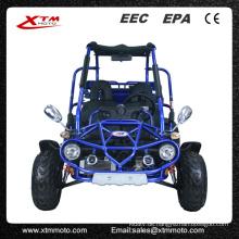 EPA/EWG Road Legal 300cc 2 Sitz automatische Dune Buggy