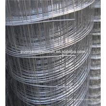 Anping Low Carbon Hot Dipped Galvanized Welded Wire Mesh