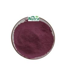 Pure Organic Chokeberry Extract Powder