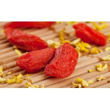 Семя красных сухофруктов Wolfberry