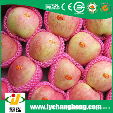 fresh fuji apples for sale with lowest price