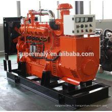 Générateur de biogaz 400kva homologué CE avec pièces détachées et support technique solide