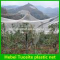 red anti granizo del manzano de alta calidad hecha en China