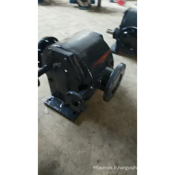 WQCB pompe de conservation de la chaleur à haute température pompe à asphalte / pompe à bitume