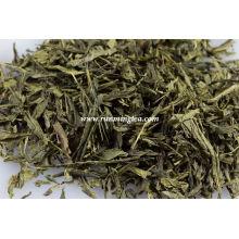 sencha teabags